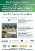 Valorizzazione dei sottoprodotti della lavorazione di olive di Piantone di Mogliano: risultati conseguiti annualità 2019 - 2020