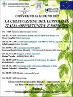 La coltivazione del luppolo in Italia: opportunità e impieghi