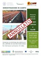 ANNULLATO: Tecniche di potatura del mirtillo e del lampone in colture fuori suolo